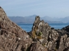 rocks_and_sea